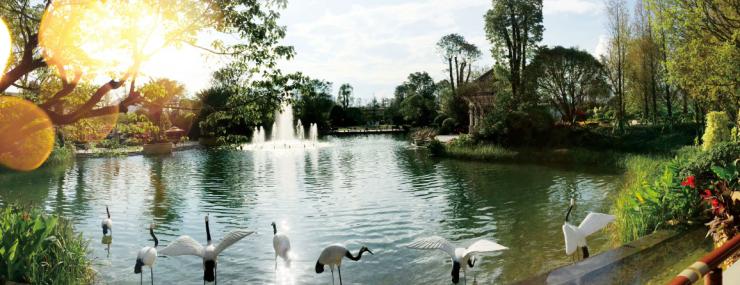 【桂林恒大城】5万欧式园林景观为何被如此点赞?