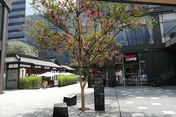 远洋之旅品牌ThirdDay:远洋太古里彰显独有魅华东建筑设计研究院校招图片