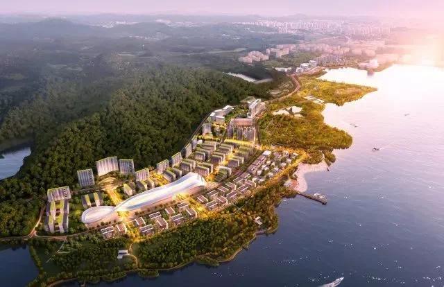 """去年,深圳国际生物谷被纳入""""广深科技创新走廊""""十大核心创新平台之一"""