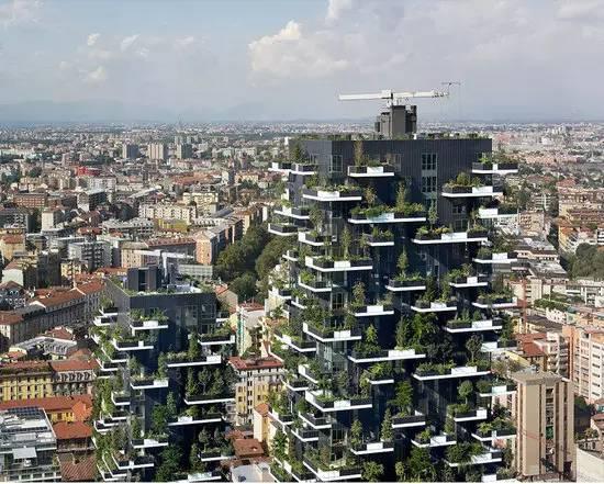 1万株草本植物 在米兰垂直森林中,每一位居民都能享受到
