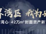 广东省最新发展规划发布 珠海被定位为中心