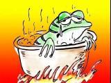 宜春楼市,或许你就是那只愚蠢青蛙!