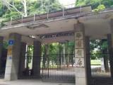南宁西园饭店280亩旧改项目 又是华润中标?
