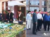 继投资长沙和湘潭后,深圳德思勤有望落地株洲,考察了这些片区!
