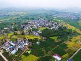 丽水仙居至庆元公路松阳县水南至枫坪段工程将开建