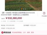 起拍价5.3亿 被多家法院查封 滨江明珠城三期地块司法拍卖