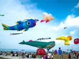 【中央公园】2018年首届风筝文化艺术节3月10日即将启幕