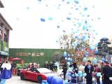 与世界共湾区 | 碧桂园海湾1号绮境示范区盛装开放