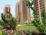 淄博楼市这个自带超级流量的楼盘 为何一年猛涨了2倍