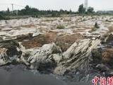江苏泰兴长江边违法倾倒污泥两年未整改 被曝光后再启整改