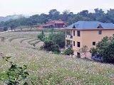 龙岩20个村入选社区建设省级示范单位,你家乡上榜了吗?