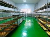 朝天区:首届中子月饼文化节将于9月16日举行