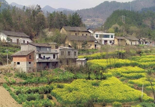 农民进城落户是否可以保留集体收益分配权?
