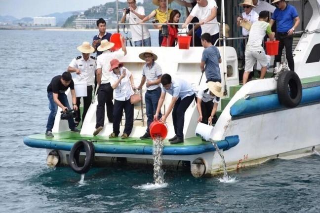 万宁投入480万元修复日月湾海洋生态环境