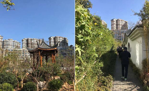 晚读:青岛棚户区改造已开工近3万套 李家庵第二小学开工建设