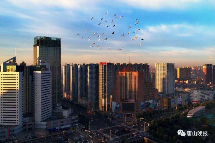 """唐山市城管局:""""四大工程""""促城市建设管理高质量发展"""