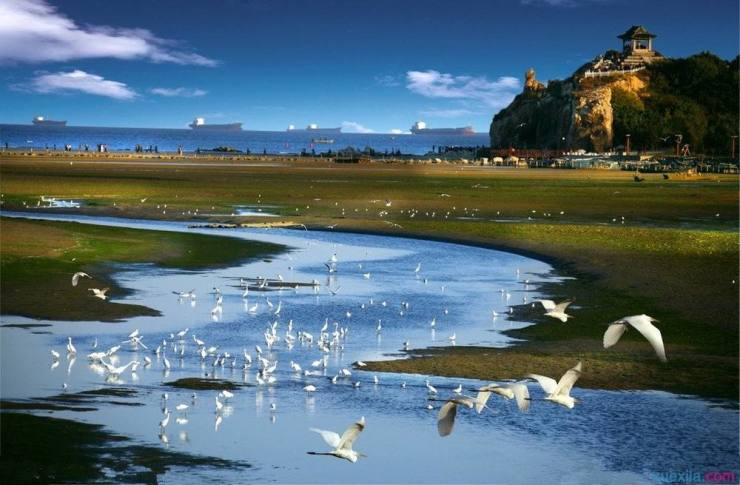 风从海上来 改革进行时 生态北戴河置业指南