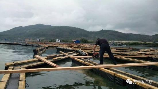 万宁拆除老爷海海域7座抢建渔排近500个养殖栏口