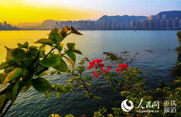 万州:扮靓城区景观 把最好的风景给市民