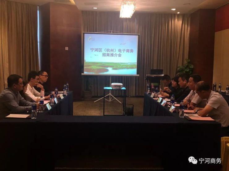 宁河区参加第五届中国(杭州)国际 电子商务博览会!