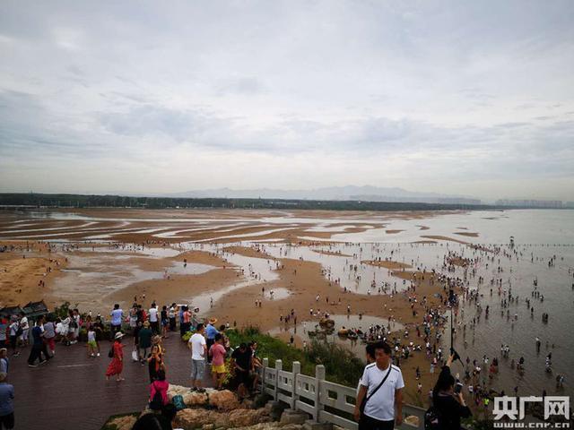 """中国旅游业""""摇篮""""北戴河 打造全域旅游示范区""""再腾飞"""""""