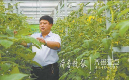 """""""带头人""""王传喜:把负债380万的代村带成了年入过亿"""