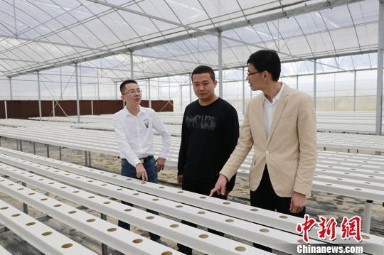 福建晋江创建省级现代蔬菜产业园促农业升级