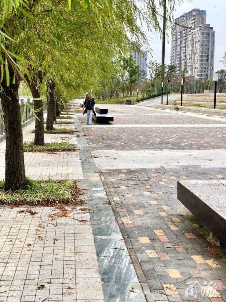 城市邊角地受追捧!秋日下,濱江景觀公園走走真不錯