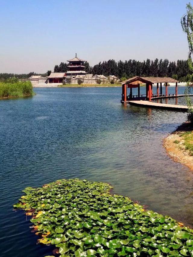 废弃坑塘变生态园,邯郸这地儿在全国火了!新华社、人民网……